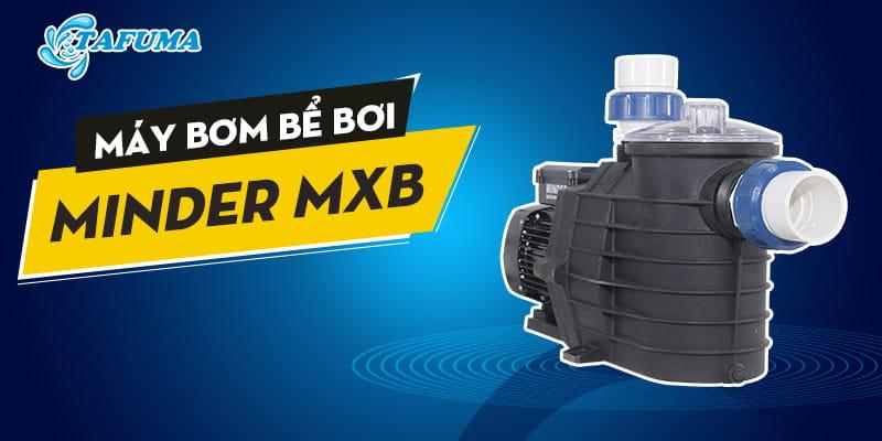 Máy bơm bể bơi Minder series MXB