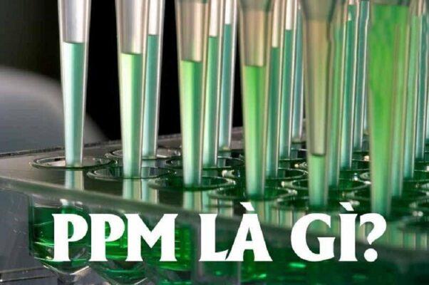 PPM-la-gi