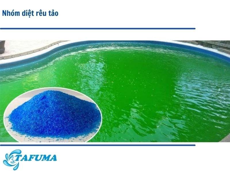 hóa chất diệt rêu tảo