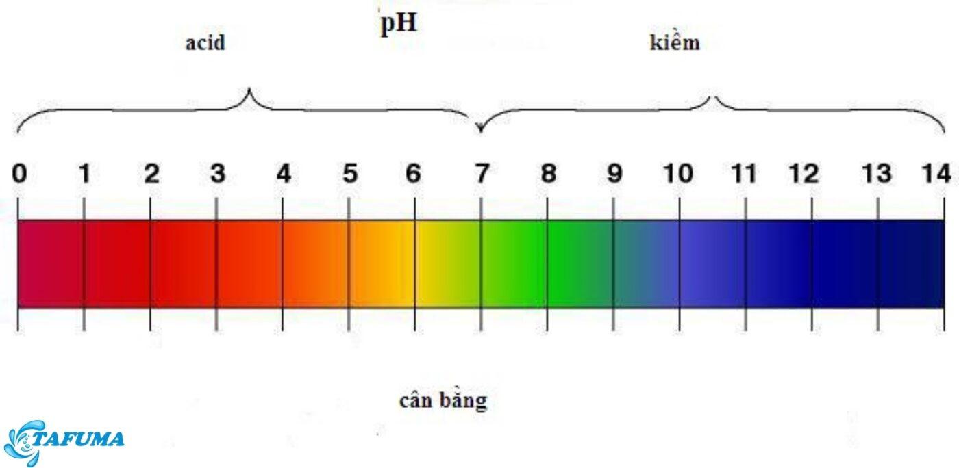 Cách tính pH