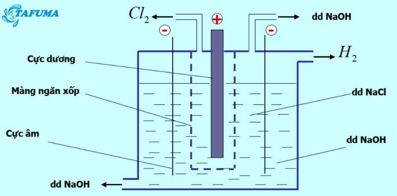 Điện phân dung dịch NaCl